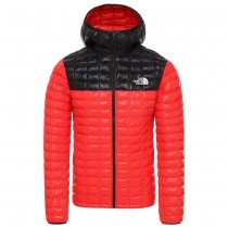 THE NORTH FACE - M TBLL ECO HDIE - MEN